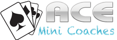 ace mini bus logo